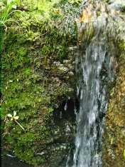 La cueva en la cascada